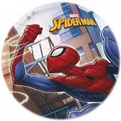 Тарелка керамическая. Человек-паук Улицы