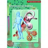 Интерактивные плакаты. Биология человека. Программно-методический комплекс (DVD-box)
