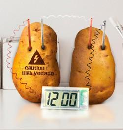 Как сделать картофельные часы и провести познавательный эксперимент для детей?