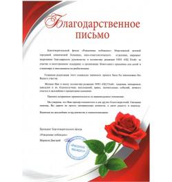 Благодарственное письмо НД Плэй