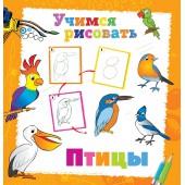 Книга. Учимся рисовать. Птицы