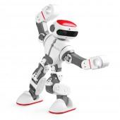 Интеллектуальный робот WL Tech Dobi F8 - WLT-F8